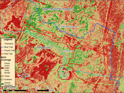 Map displaying 2016 NDVI vegetation coverage and their equivalent values within the study site.